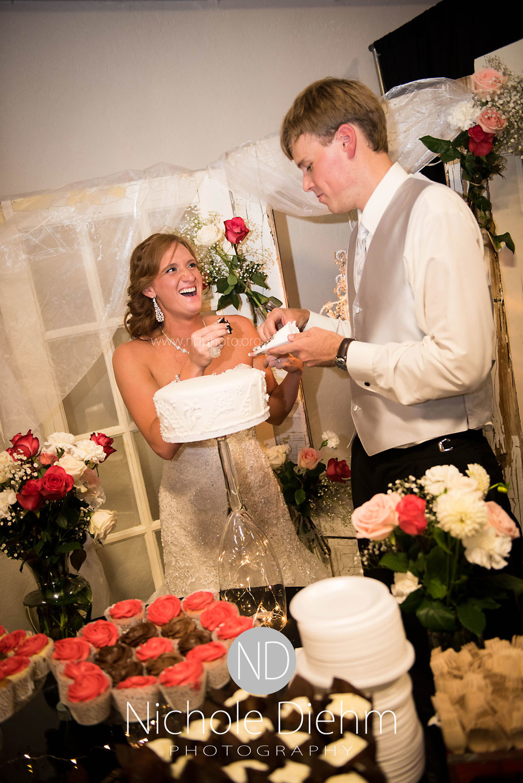 Brook-and-Stu-say-I-do-Cedar-Falls-Spencer-Iowa-reception-cake-cutting1.jpg