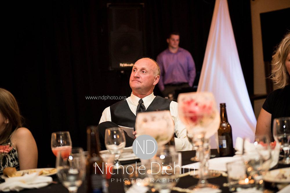 Brook-and-Stu-say-I-do-Cedar-Falls-Spencer-Iowa-reception-speeches3.jpg