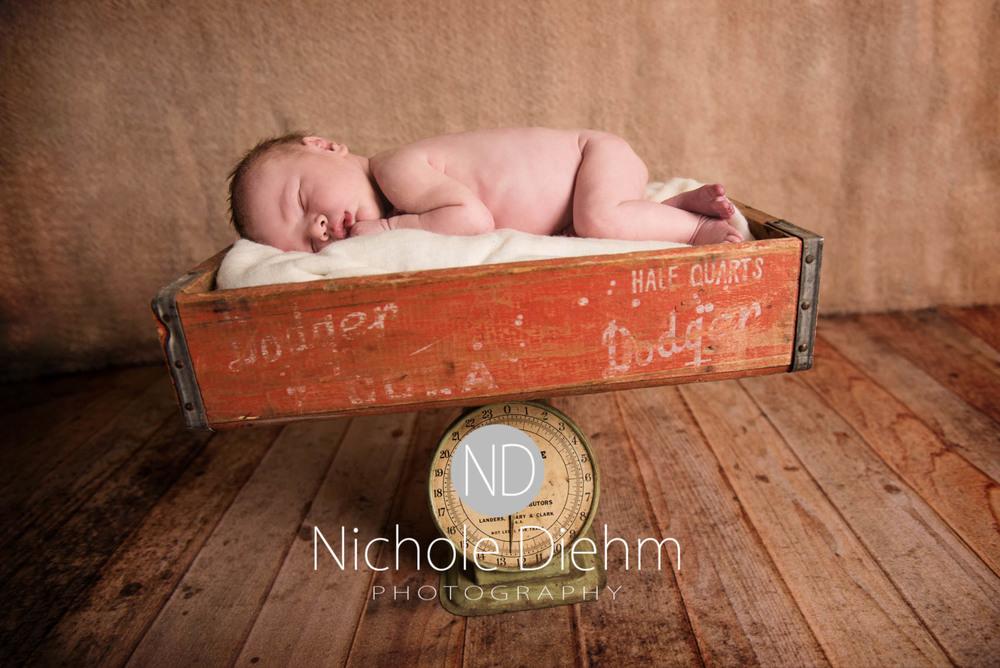 Baby_Photography_Cedar_Falls_Iowa_Benjamin105.jpg
