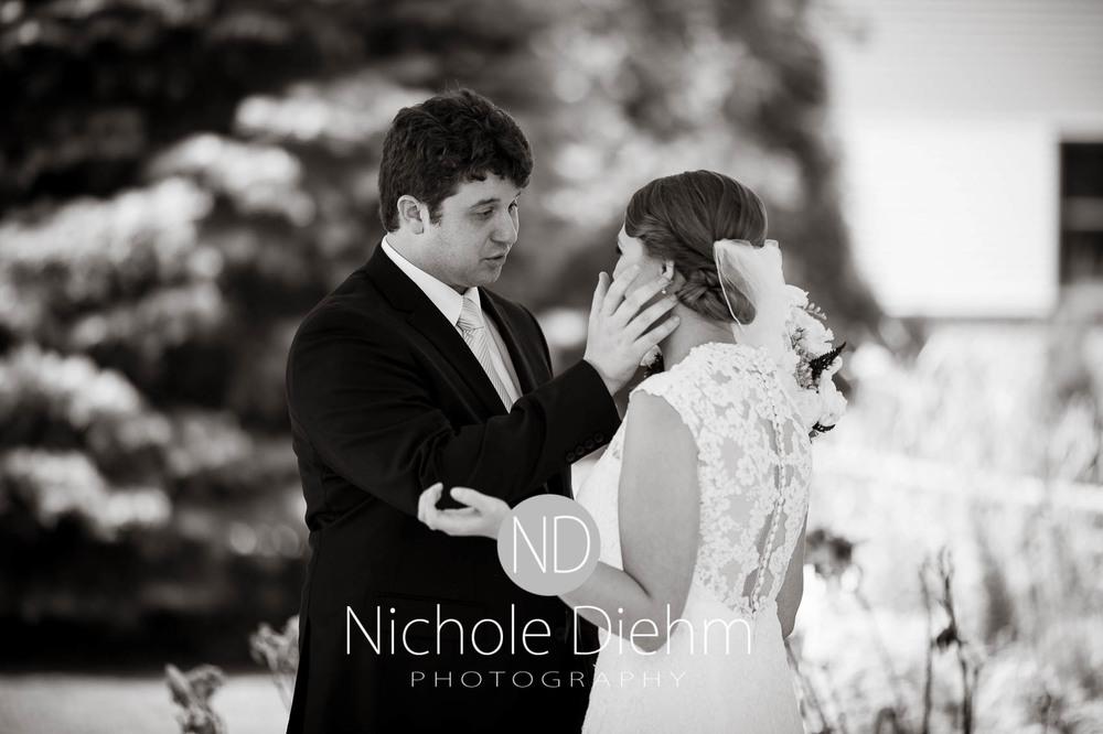 Katie-Schneider-Sam-Kelly-Wedding-Cedar-Falls-Iowa-Photographer-Nichole-Diehm-Photography-St.Stephens-Electric-Park-Ballroom-UNI232.jpg