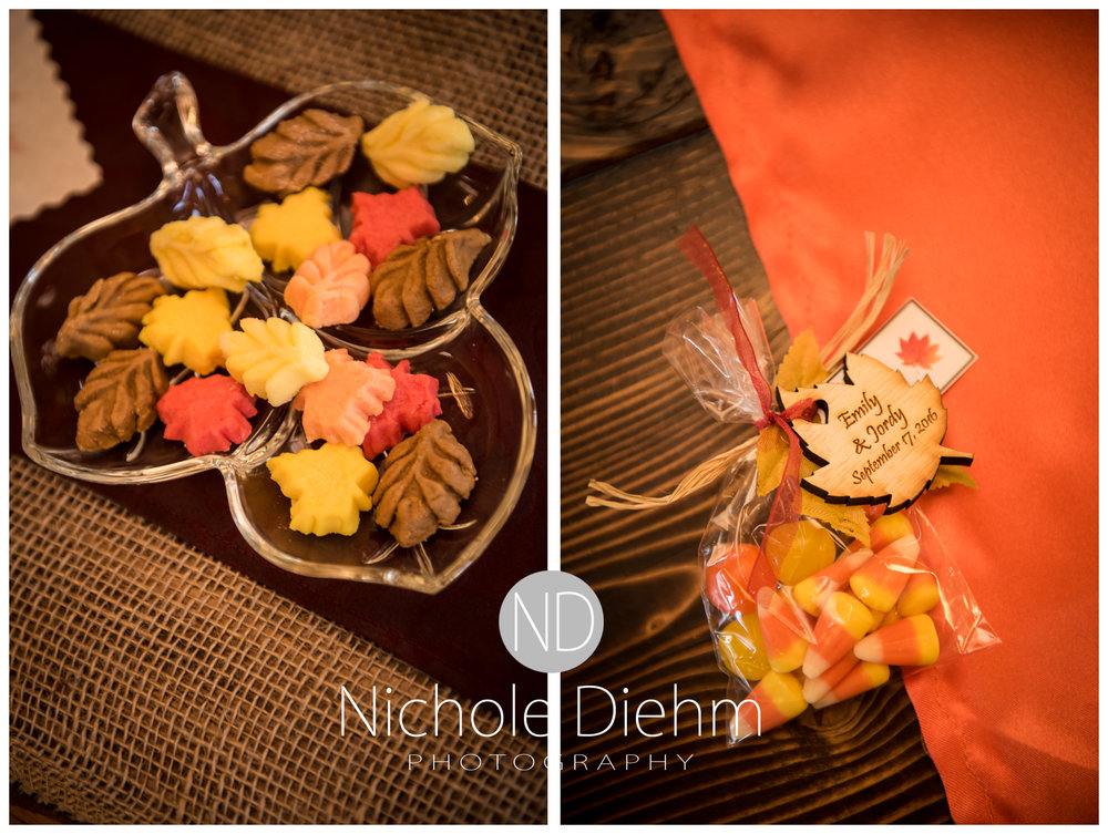 Cedar-Falls-Iowa-Wedding-Photographer-Sioux-Falls-South-Dakota-Emily-Stricklin-Jordy-Reinders-Meadow-Barn-Fall-Nichole-Diehm-Photography-Venue231a.jpg