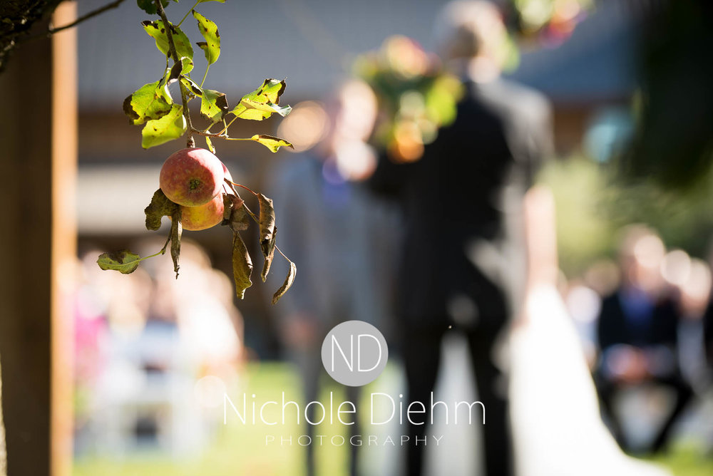 Cedar-Falls-Iowa-Wedding-Photographer-Sioux-Falls-South-Dakota-Emily-Stricklin-Jordy-Reinders-Meadow-Barn-Fall-Nichole-Diehm-Photography-Venue269.jpg