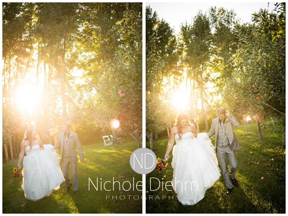 Cedar-Falls-Iowa-Wedding-Photographer-Sioux-Falls-South-Dakota-Emily-Stricklin-Jordy-Reinders-Meadow-Barn-Fall-Nichole-Diehm-Photography-Venue333a.jpg
