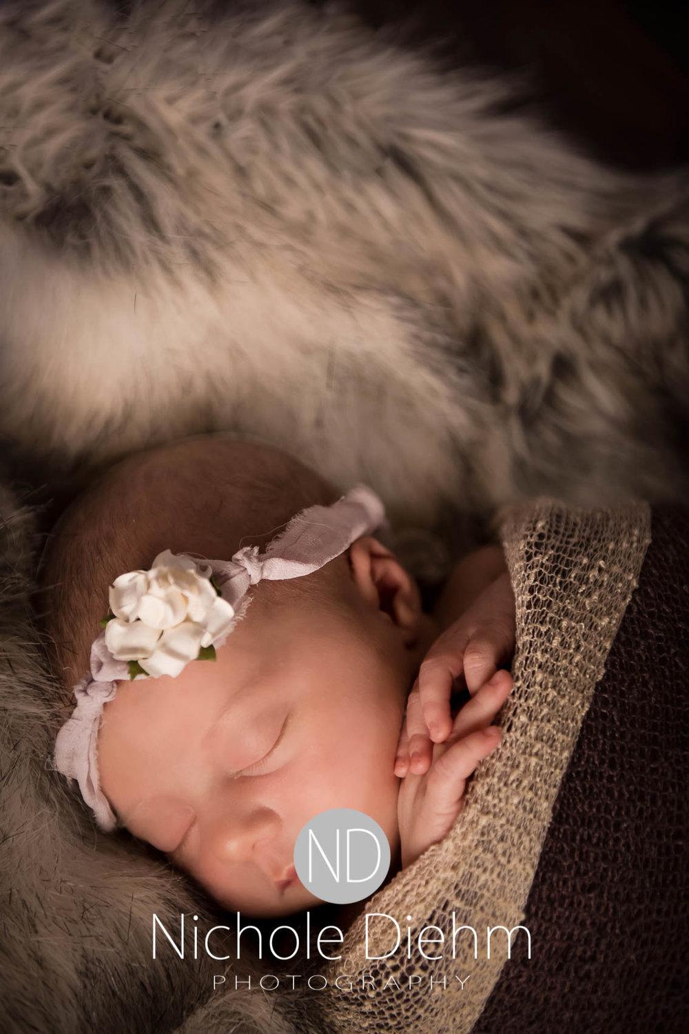 cedar-valley-iowa-photographer-newborn-nichole-diehm-photography-brielle114.jpg