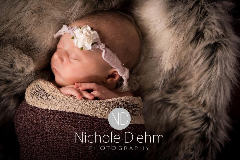 cedar-valley-iowa-photographer-newborn-nichole-diehm-photography-brielle113.jpg