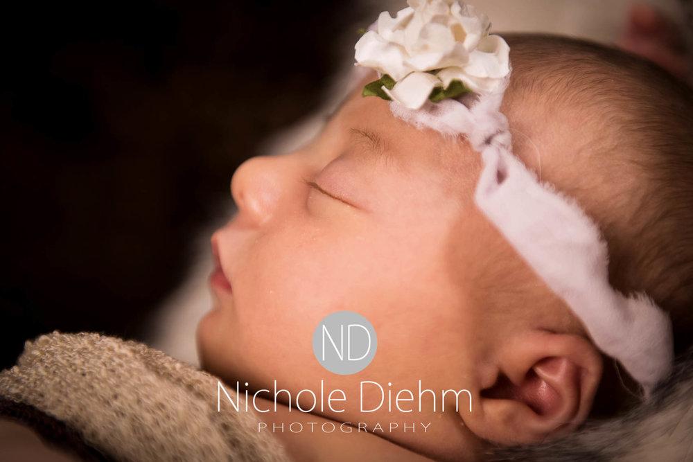 cedar-valley-iowa-photographer-newborn-nichole-diehm-photography-brielle118.jpg