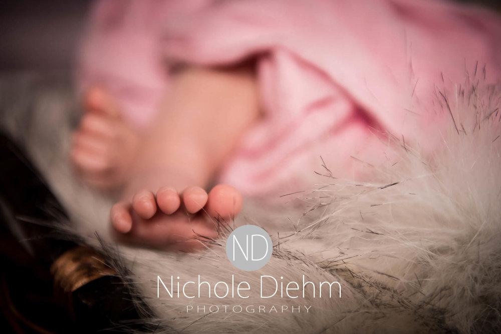 cedar-valley-iowa-photographer-newborn-nichole-diehm-photography-brielle130.jpg