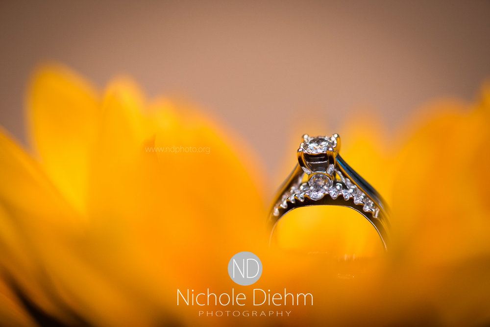 Cedar-Falls-Wedding-Photographer-John-Katie-Hilton-Garden-Inn-St-Eds-Church174.jpg