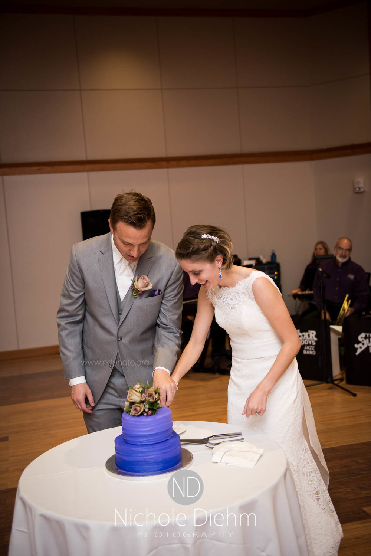 Cedar_Falls_Wedding_Photographer_Nichole_Diehm_Photography-147.jpg