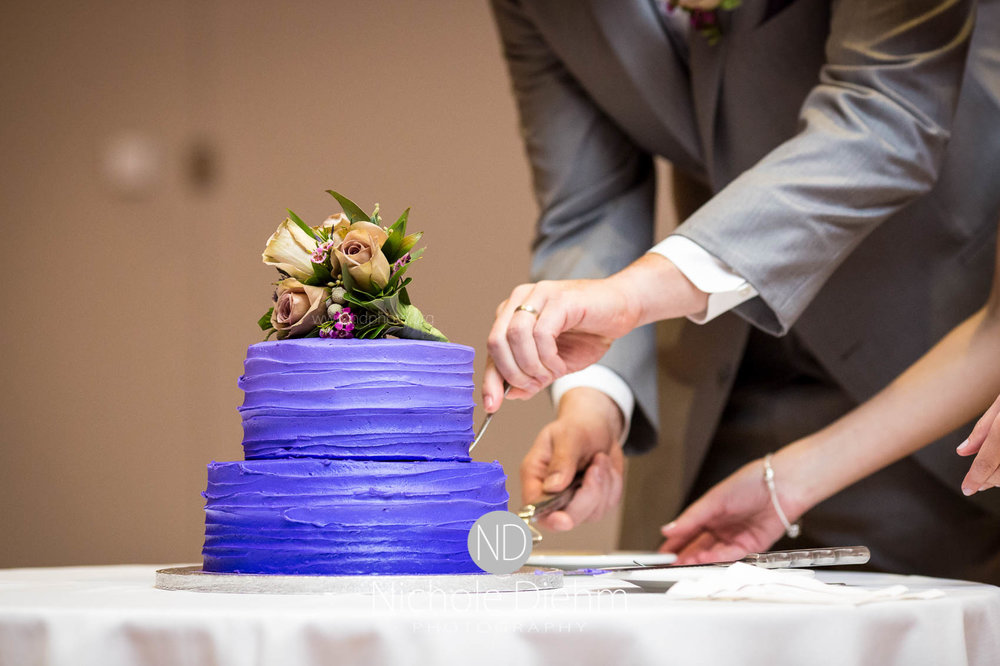Cedar_Falls_Wedding_Photographer_Nichole_Diehm_Photography-149.jpg