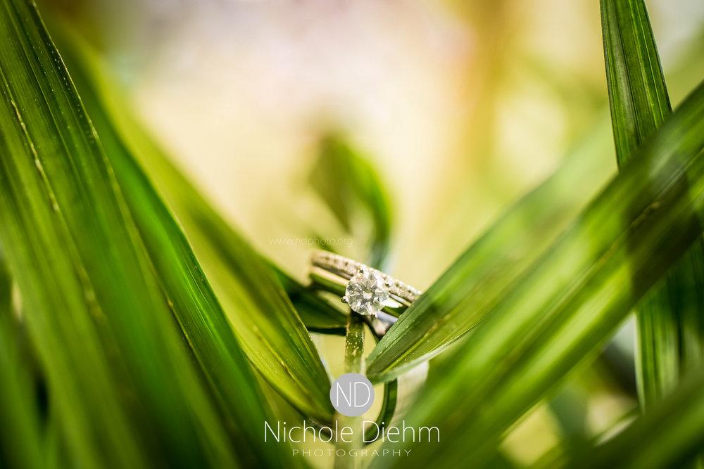 Cedar-Falls-Waterloo-Wedding-Photographer-Nichole-Diehm-Photography-Trinity-Bible-Church-Riviera-Roose-Janesville-Iowa-Tempa-Josh-Huffman_126.jpg
