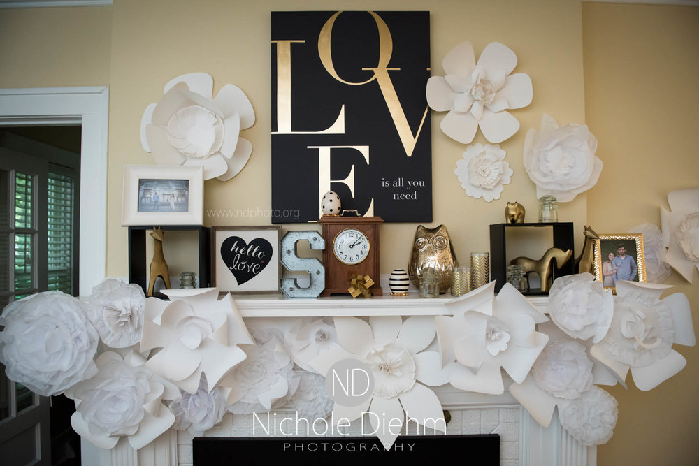 Cedar-Falls-Waterloo-Wedding-Photographer-Nichole-Diehm-Photography--29.jpg