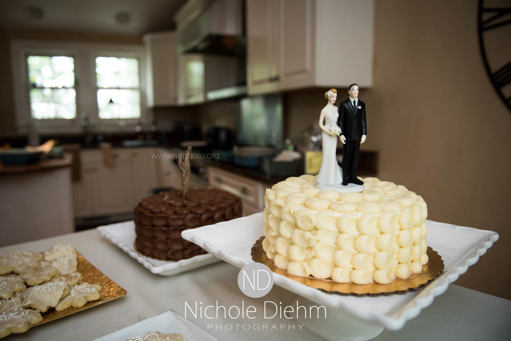 Cedar-Falls-Waterloo-Wedding-Photographer-Nichole-Diehm-Photography--38.jpg