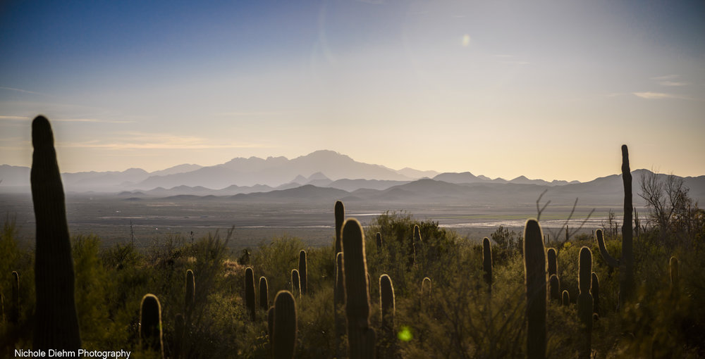Nichole-Diehm-Photography-Tucson-Arizona-222.jpg