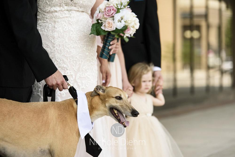 Darren & Lauren Cedar Falls Waterloo Iowa Wedding photography MOD Brown Derby-119.jpg