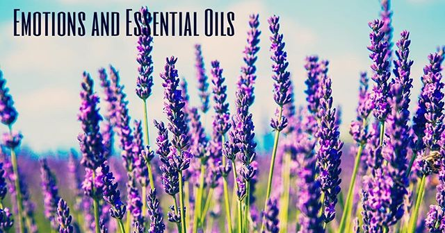 Please join me in an Essential Oils and Emotions class being held at Integrative Wellness Options on March 25th from 12pm-1:30pm