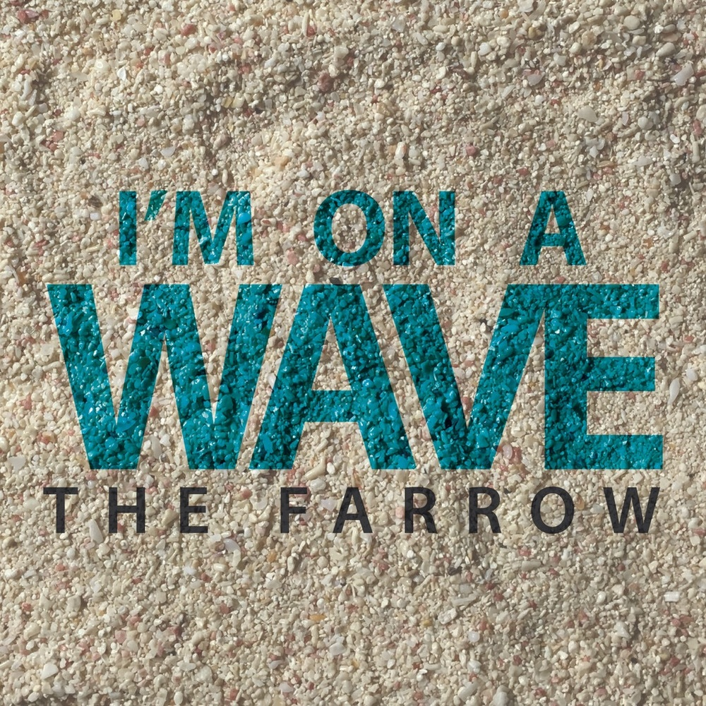 """The Farrow """"Im On A Wave""""  Bio Peeks :   Originally from Minneapolis, MN and now based in NYC, The Farrow's fresh sound and bracing delivery, makes him one to watch in 2016. The Farrow's father is a guitarist and his brother is a drummer so music is in his blood. He recorded his first song at only nine years old and when he got an 8 track receiver for his 10th birthday it was that moment that The Farrow truly fell in love with music. From hustling his CD's out of his middle school locker to recording in Mally Mall's famous recording studio """"The Cribo,"""" The Farrow has made lengthy strides in his young music career. 2015 saw The Farrow complete his first regional tour, selling out shows in Riverside, Corona, Los Angeles and more. With his unparalleled work ethic and superstar potential, The Farrow is quickly becoming the ladies favorite… and sure to continue his rise to stardom."""