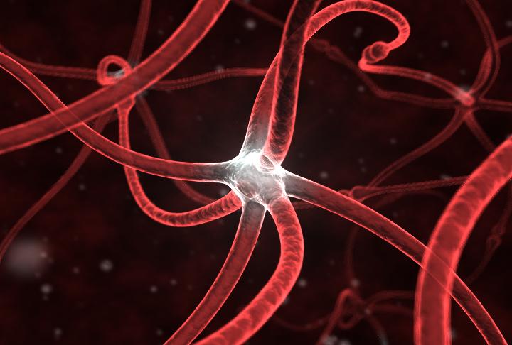 synapse_011.jpg