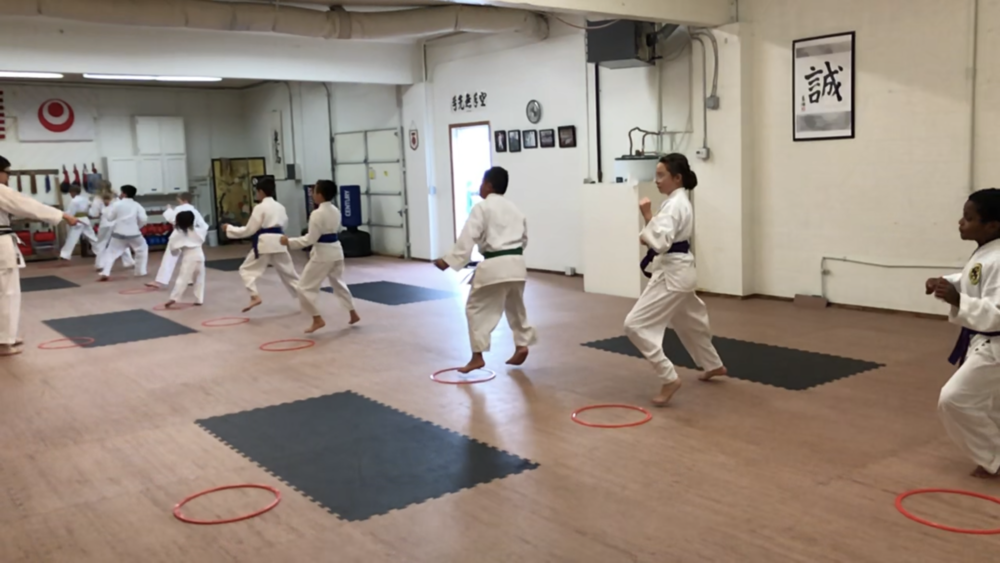 "Concentration - They emphasize self-control and concentration. Attention is central to martial arts. Kids must stay focused to learn and to perform. When a child's focus drifts, instructors will often ask them to take the ""ready stance."" This position allows them to reset and ready themselves for what's next."