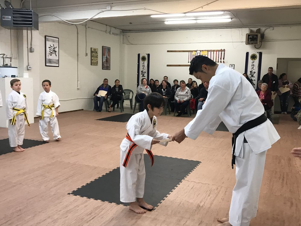 "Motivated - They offer concrete, attainable goals. Some kids with learning and attention issues may feel like they never ""win"" at anything. In martial arts, kids work at their own pace. They're awarded a different colored belt every time they reach a new skill level. This can boost self-esteem and keep them motivated."