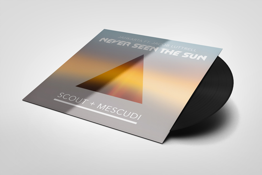 NSTS_VinylRecord.jpg