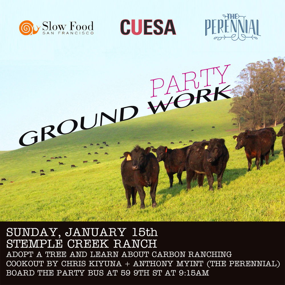 Start the New Year as a climate hero!      Join a tree-planting party and farm tour to support carbon farming at Stemple Creek Ranch, sponsored by CUESA, Slow Food SF, and The Perennial! Your efforts will be rewarded with a great meal prepared by Chris Kiyuna and Anthony Myint of The Perennial, along with drinks and stimulating conversation. Stemple Creek Ranch was one of the first farms to participate in a decade-long carbon farming trial by the Marin Carbon Project; since 2014, Stemple Creek has implemented many climate-beneficial features on the ranch, but more trees mean more CO2 pulled out of the air, and this is where we can lend a hand! The willows and redwoods we plant will sequester about 3 tons of carbon per year—over their lifetime, that's equivalent to 27,000 gallons of gasoline.    After we plant the trees, we'll take a walking tour with fourth-generation Stemple Creek rancher Loren Poncia, and learn how animals are a crucial part of regenerative agriculture: improving the soil, drawing down greenhouse gases, and making the pasture more resilient to drought. Then we'll enjoy food, drinks, and conversation in Stemple Creek's barn. The Perennial is bringing their beloved Kernza bread (made from a perennial grain whose deep roots also fight climate change), as part of a delicious lunch featuring Stemple Creek's meat, produce from some of our favorite farms, and tasty adult beverages!     Meet us at The Perennial (59 Ninth St, SF) by 9:15 on Sunday morning of MLK weekend for a 9:30 departure. Please be prompt! We cannot wait for stragglers. You're also welcome to make your own way to the ranch (choose your ticket level accordingly). We plan to return to The Perennial by 5:00pm, but traffic conditions can be unpredictable and we can't guarantee an exact arrival time.     Tickets  include round-trip transportation from The Perennial in San Francisco in a comfortable bus and a delicious lunch featuring Stemple Creek Ranch beef and seasonal produce. Your ticket price also includes the cost of the willow or redwood saplings and compost – an investment in the ranch and in our climate future. The event will take place rain or shine!    What to bring: Please bring shovels and gloves if you have them (we will have some). Wear closed-toed shoes appropriate for work in the dirt or mud, and layered clothing in case of cold. We also recommend a water bottle, sunscreen, and/or a change of clothes and shoes (in case of rain). Optional: snacks, a camera, and a book or other entertainment for the bus.    The tour is geared toward adults and will probably not be enjoyable for young children. In addition, adult beverages will be served, but only to those guests who are 21 or older. Children who are likely to appreciate an adult-level tour and activity are welcome to come with their guardians. Please call if you have questions.    Please note:  Tickets  are nonrefundable but are transferable to another guest for this tour.    A note about price: CUESA is committed to providing accessible food system education to all. If you are interested in a scholarship for one of our farm tours, please email Carrie Sullivan (carrie@cuesa.org) for a scholarship application.