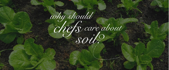 Chefs' Guide to Healthy Soil Guide (farms, ranches, restaurants rebuilding soil for flavor, nutrition, and climate)