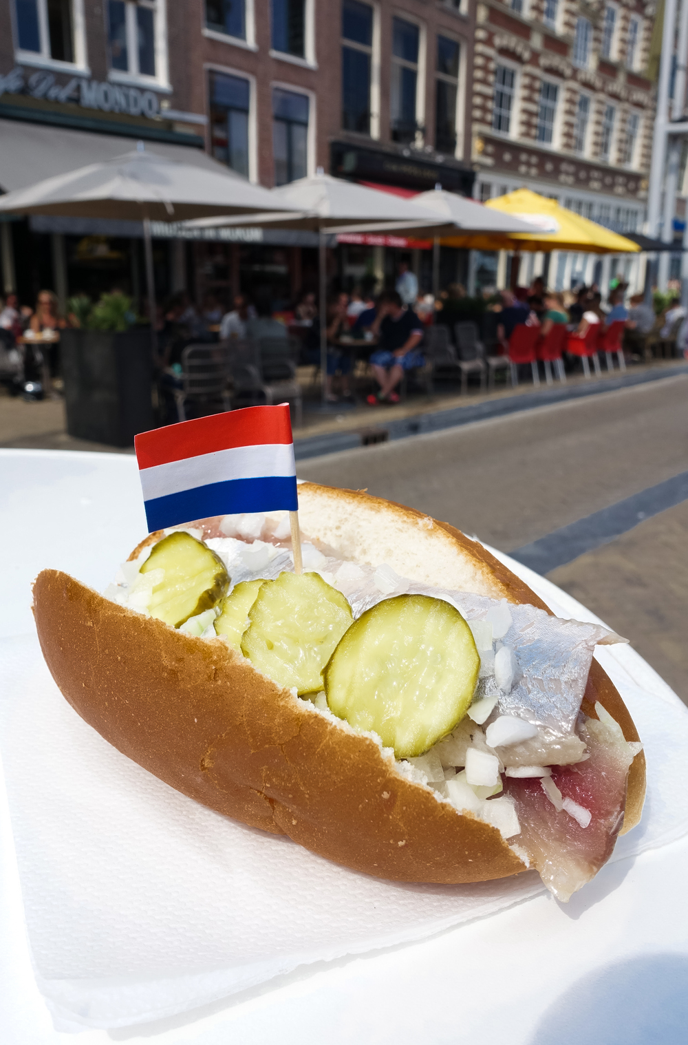 10-awesome-things-to-do-in-amsterdam-herring