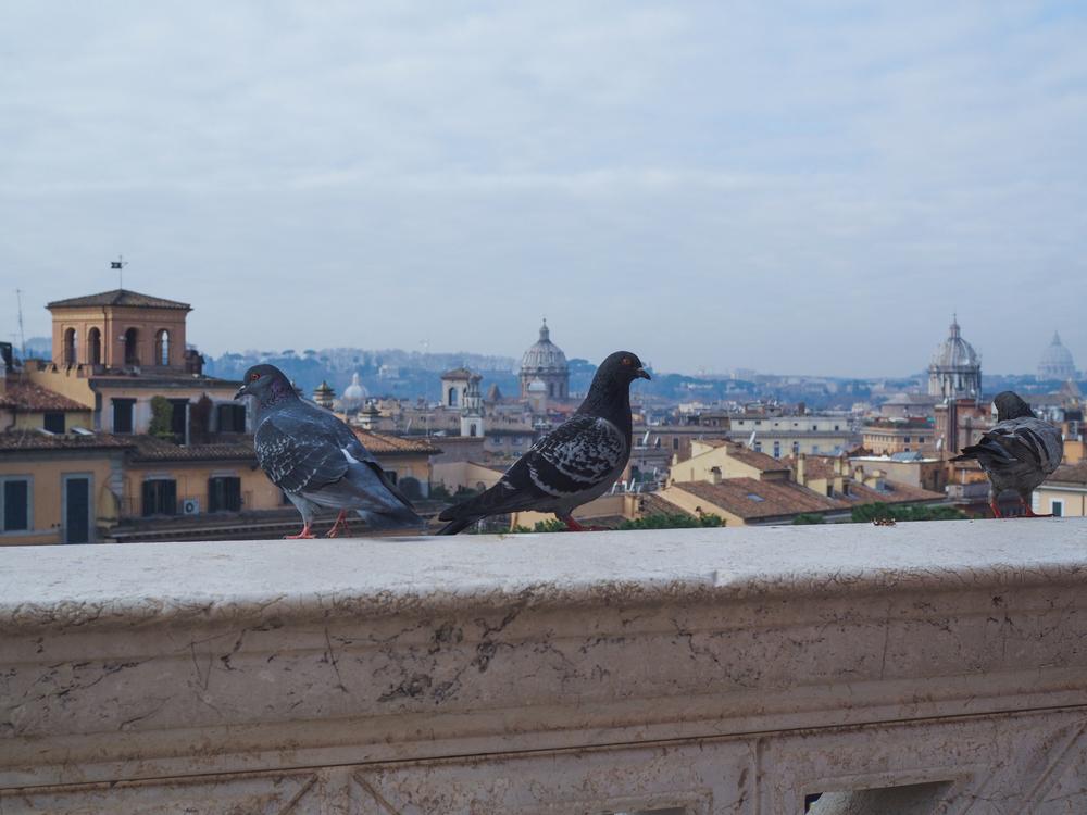 rome-italy-photo-diary-3-19