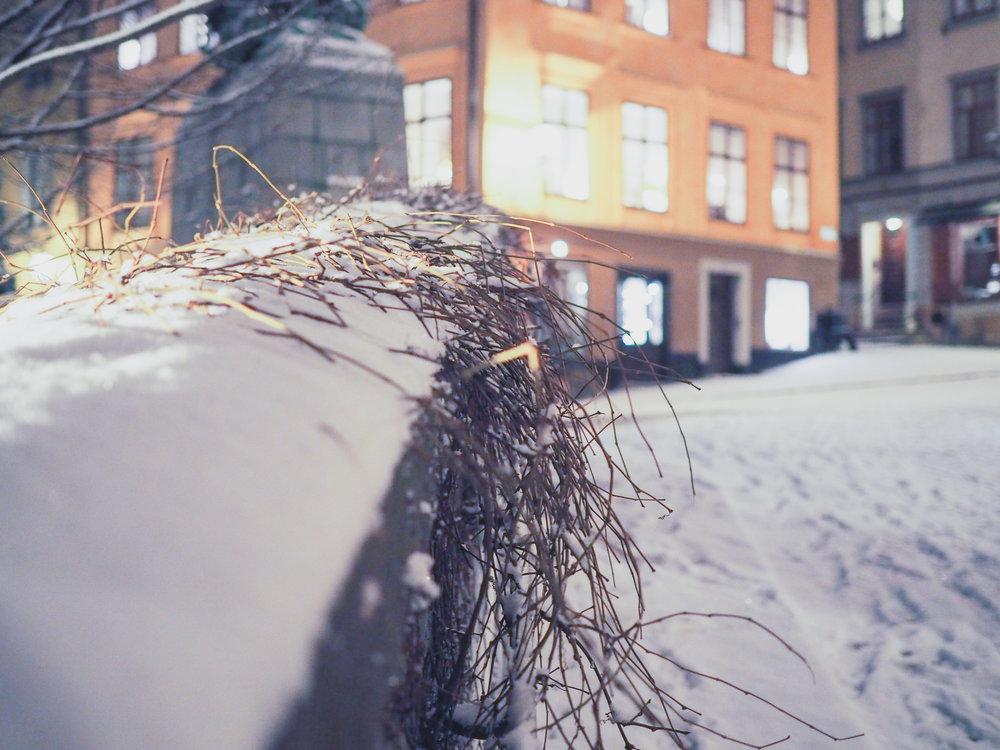winter-stockholm-sweden-12