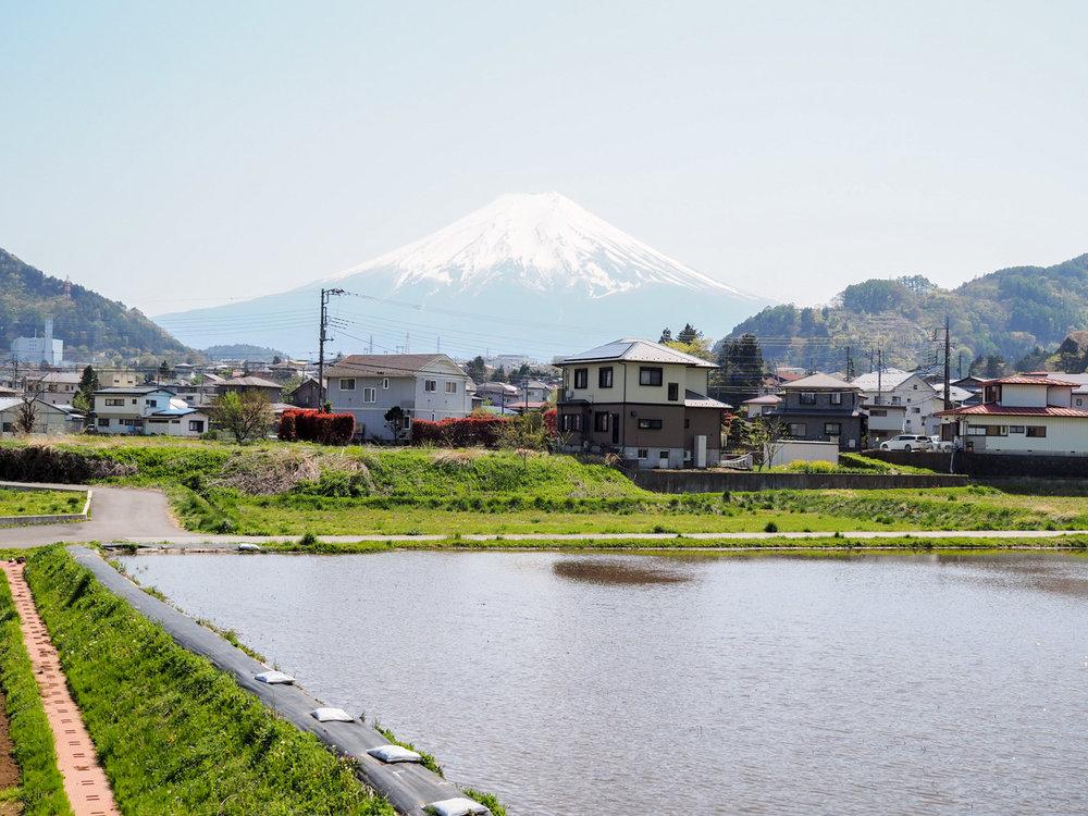 two-weeks-in-japan-72