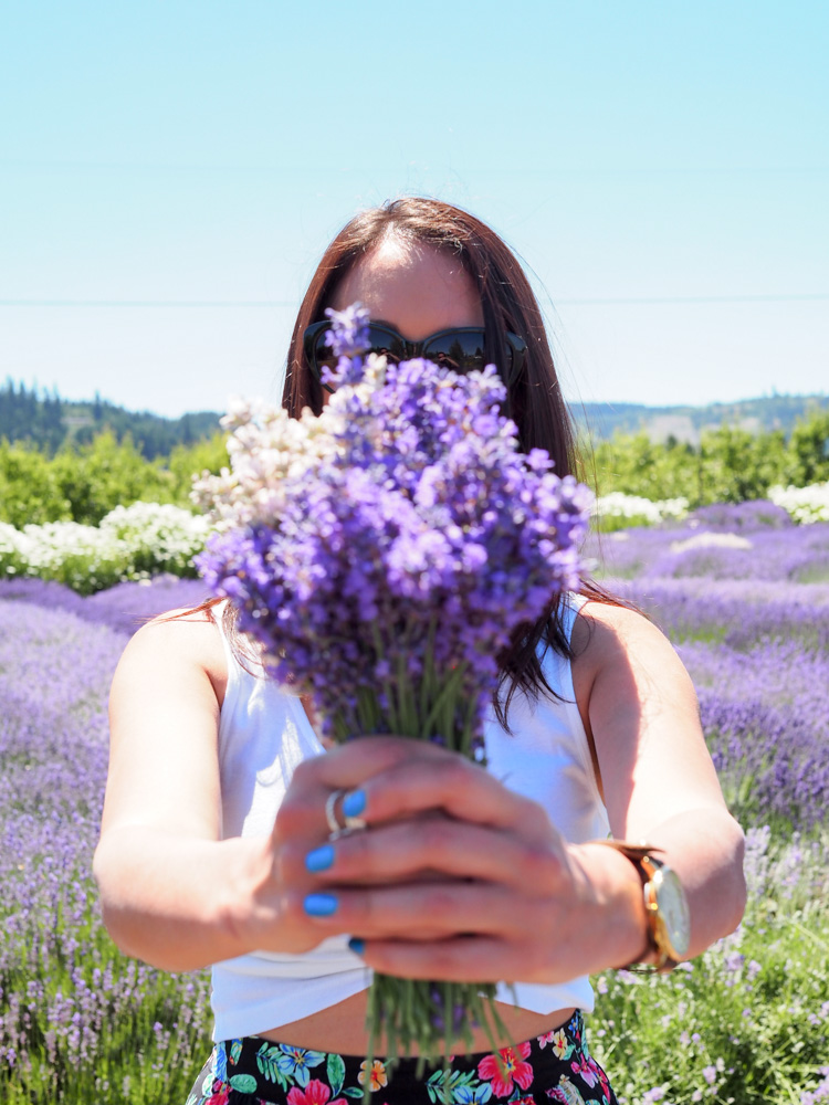 Bouquet of lavender at Hood River Lavender Farm