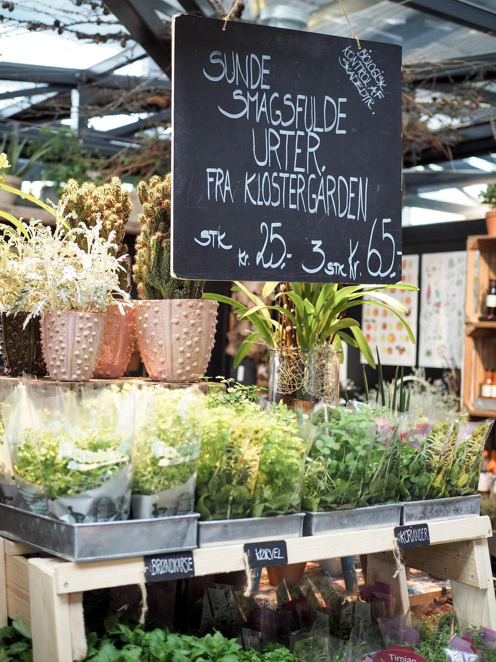 Torvehallerne food market in Copenhagen, Denmark