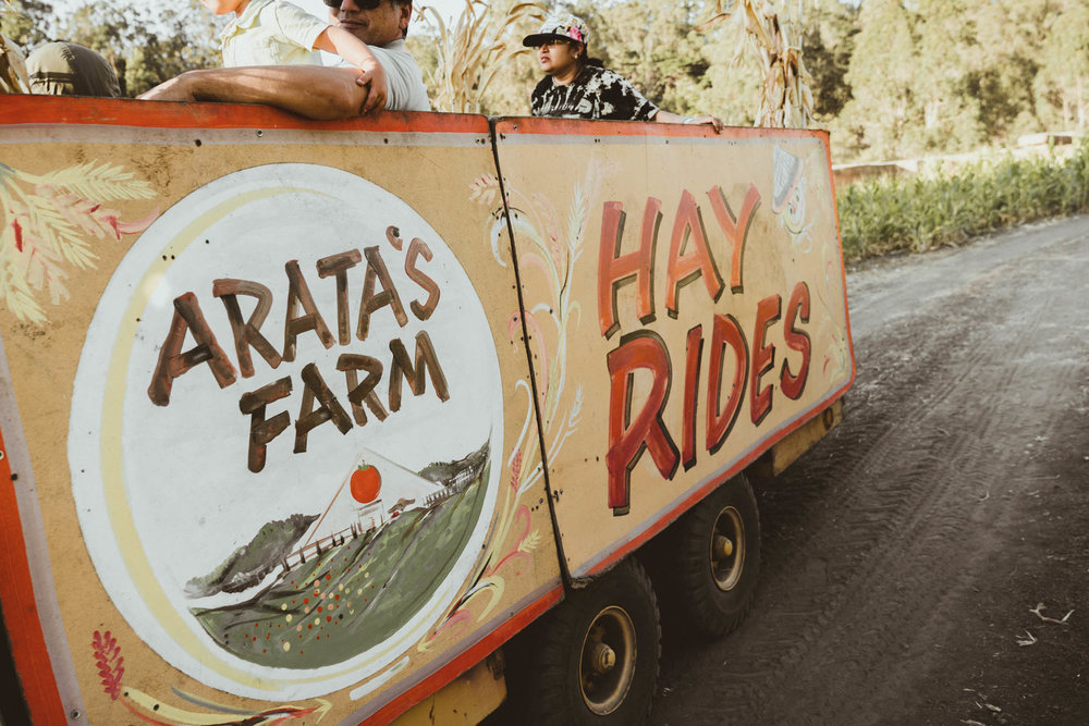 Hay ride at Arata's Farm