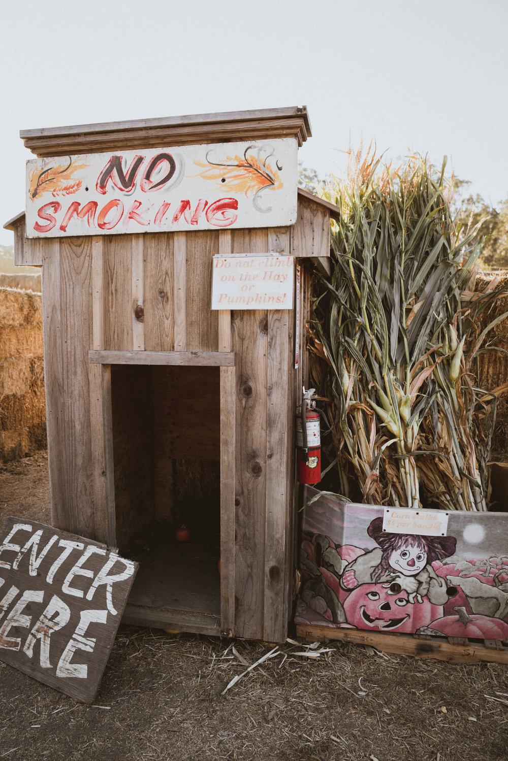 Arata's Pumpkin Farm in Half Moon Bay, California