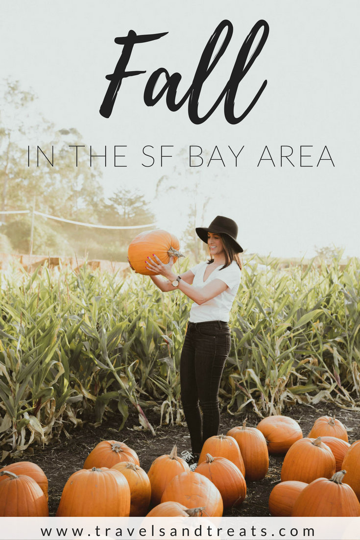 Experience Fall in the San Francisco Bay Area — Take a day trip from San Francisco to Half Moon Bay's pumpkin farm.