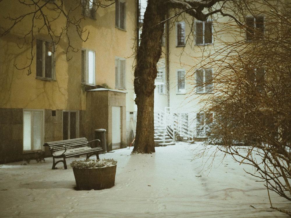 Winter scene in Stockholm
