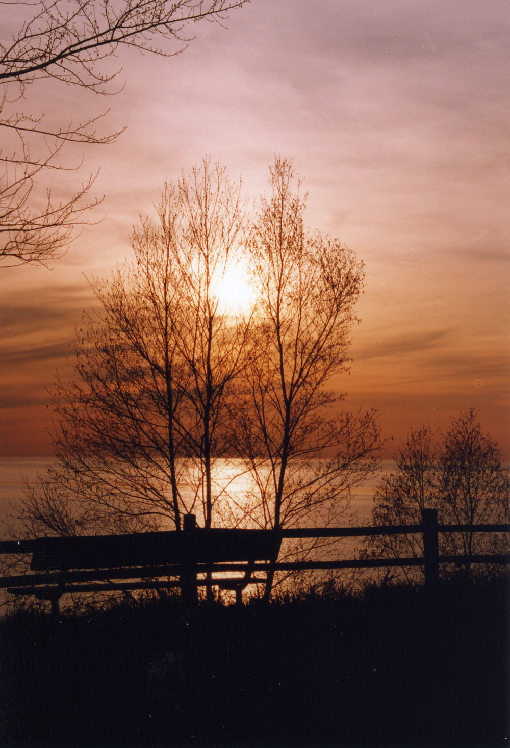 Sunset With Bench - J. Jackson.jpg