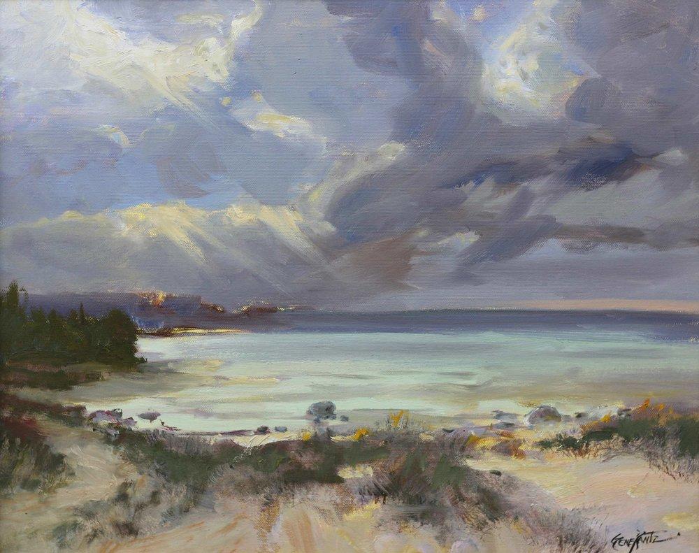 Passing Rain 16 x 20 oil, painted in plain air - S o l d