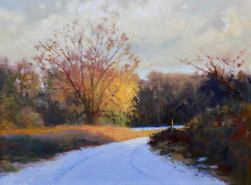 Golden Hour, Winter 20 x 16 Oil - S o l d