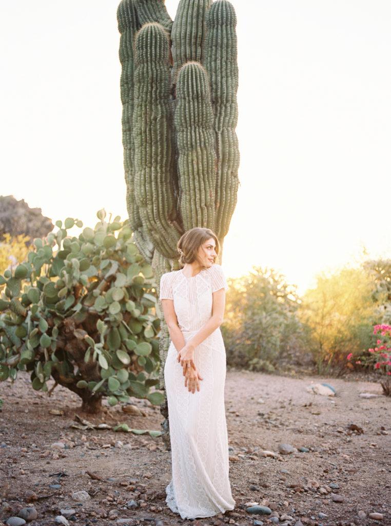 cactus-762x1024.jpg
