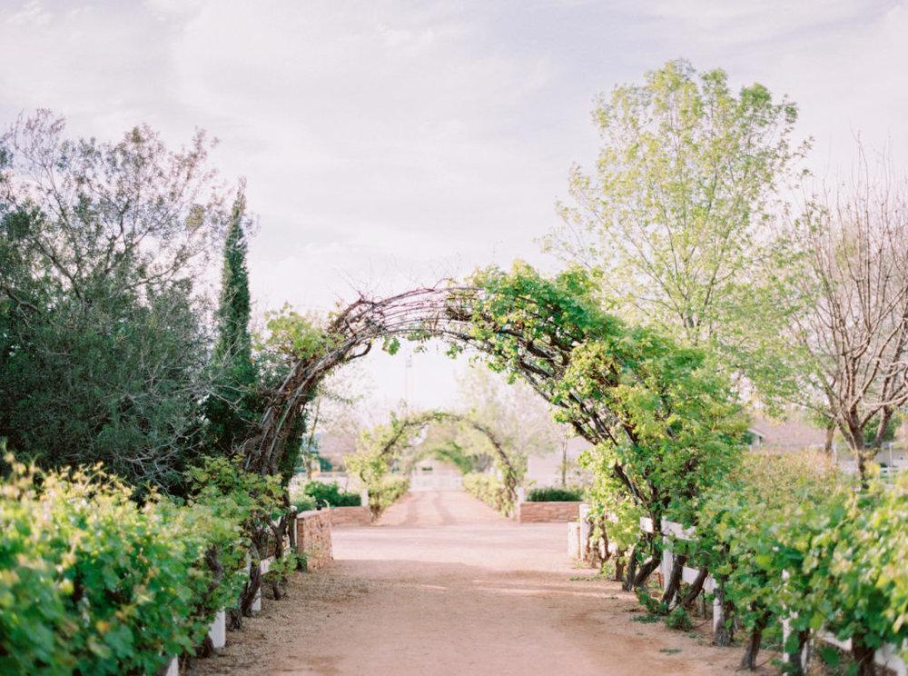 Vineyard-Farm-Wedding-Inspiration-with-Tremaine-Ranch5-1024x762.jpg