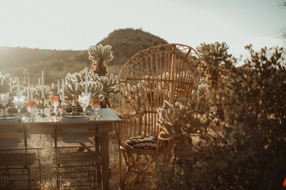 Desert Boho Vagabond Inspiration Shoot with Tremaine Ranch, From the daisies, Noir Floral, Phoenix, Arizona - Wedding & Event Rentals, Vintage, Specialty103.jpg