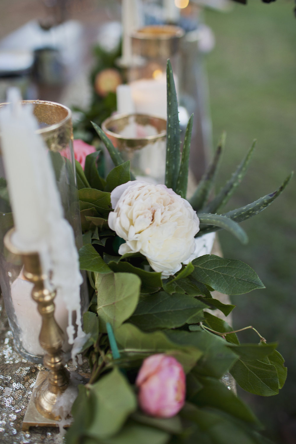 Backyard Wedding Celebration with Tremaine Ranch Wedding Event Tableware Vintage Rentals Arizona20.jpg