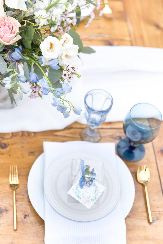 A Rainy Day and Misty Blue Baby Shower - Tremaine Ranch - AZ Arizona Wedding & Event, Vintage, Furniture, Tableware, & Specialty Rentals in Phoenix, Tucson, Flagstaff, Sedona, Tempe, Chandler, Mesa, Gilbert, Prescott, Payson 52.jpg