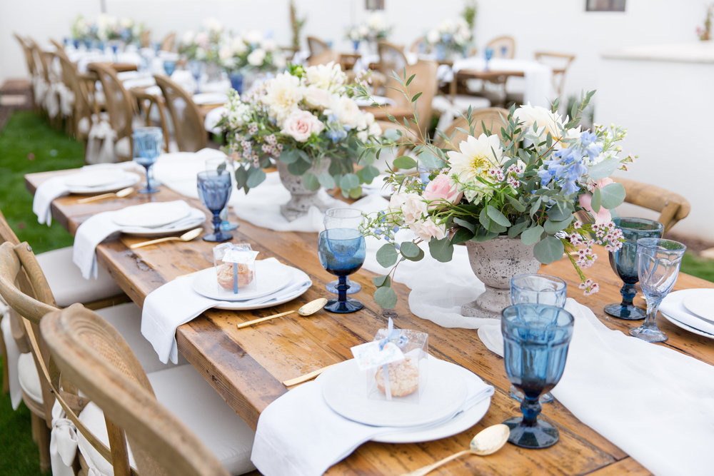A Rainy Day and Misty Blue Baby Shower - Tremaine Ranch - AZ Arizona Wedding & Event, Vintage, Furniture, Tableware, & Specialty Rentals in Phoenix, Tucson, Flagstaff, Sedona, Tempe, Chandler, Mesa, Gilbert, Prescott, Payson 512.jpg