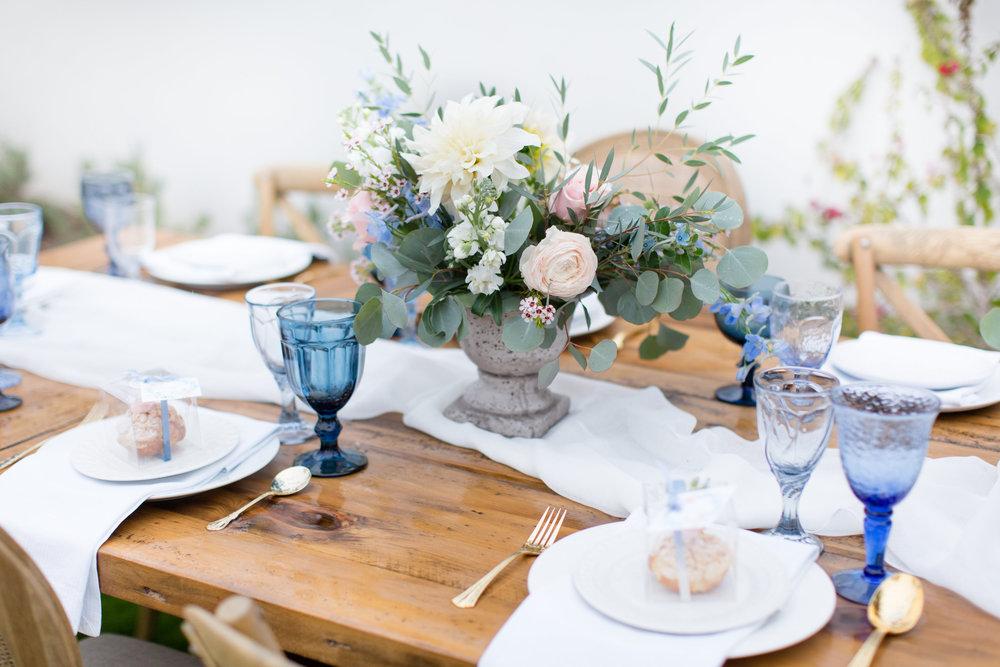 A Rainy Day and Misty Blue Baby Shower - Tremaine Ranch - AZ Arizona Wedding & Event, Vintage, Furniture, Tableware, & Specialty Rentals in Phoenix, Tucson, Flagstaff, Sedona, Tempe, Chandler, Mesa, Gilbert, Prescott, Payson 514.jpg