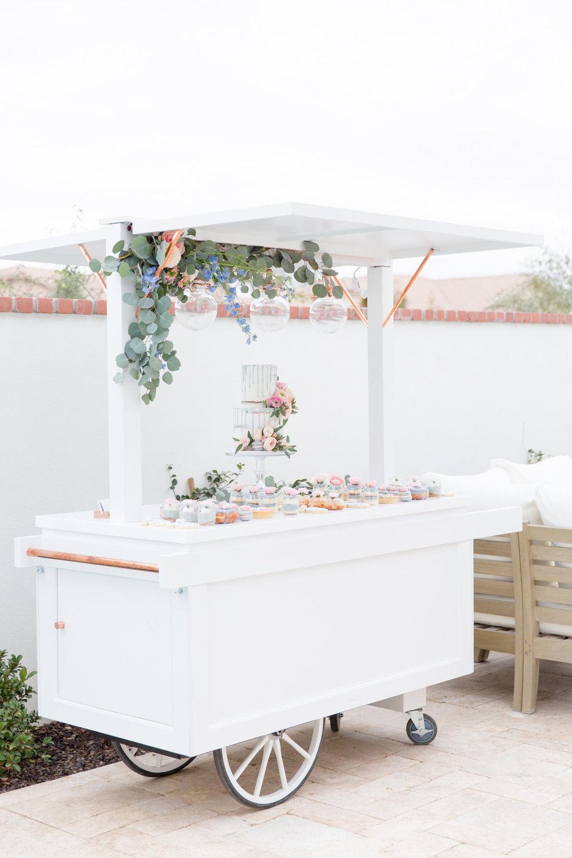 A Rainy Day and Misty Blue Baby Shower - Tremaine Ranch - AZ Arizona Wedding & Event, Vintage, Furniture, Tableware, & Specialty Rentals in Phoenix, Tucson, Flagstaff, Sedona, Tempe, Chandler, Mesa, Gilbert, Prescott, Payson 529.jpg