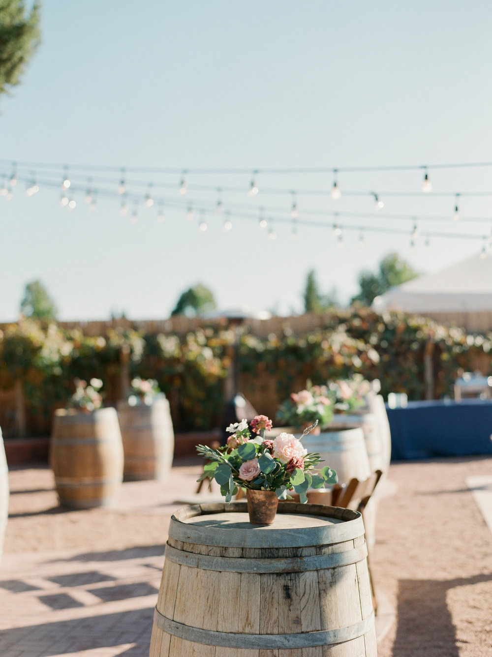 An Intimate Sedona Wedding Nestled in the Arizona Red Rocks  - Tremaine Ranch - AZ Arizona Wedding & Event, Vintage, Furniture, Tableware, & Specialty Rentals in Phoenix, Tucson, Flagstaff, Sedona, Tempe, Chandler, Mesa, Gilbert, Prescott, Payson 529.jpg