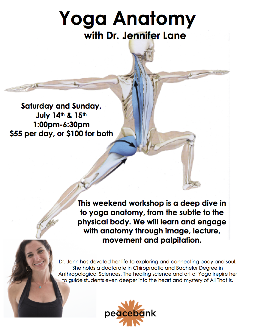 Yoga Anatomy with Dr. Jennifer Lane — peacebank yoga studio